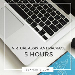 Web Design Virtual Assistant